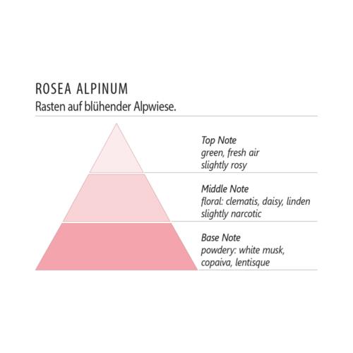 Duftpyramide Rosea Alpinum